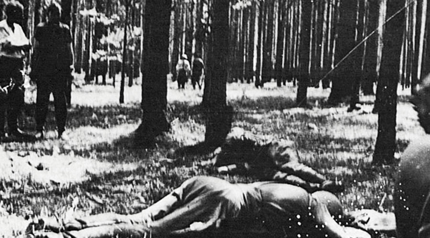 606f08d1ae5ac950016c507a «Об этом нельзя молчать»: Минобороны запустило проект о жертвах нацизма в годы ВОВ