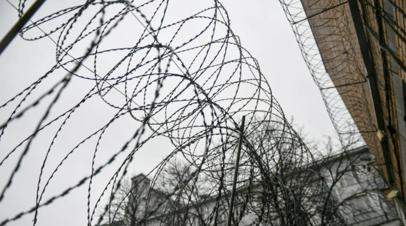 Ударивший полицейского на акции 23 января получил два года колонии
