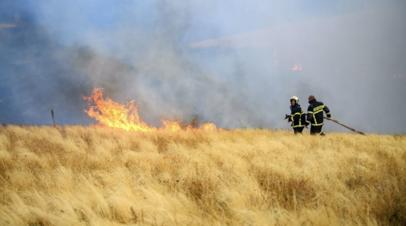 В МЧС рассказали о ситуации с возгоранием сухой травы в России