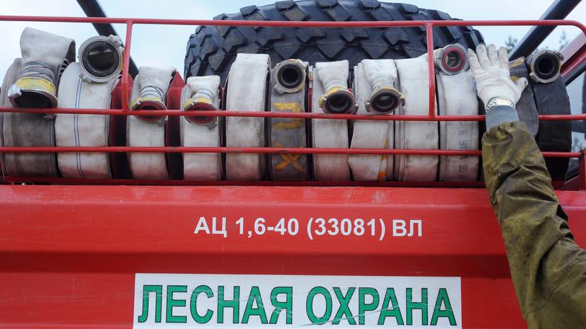 В России за сутки потушили 77 лесных пожаров