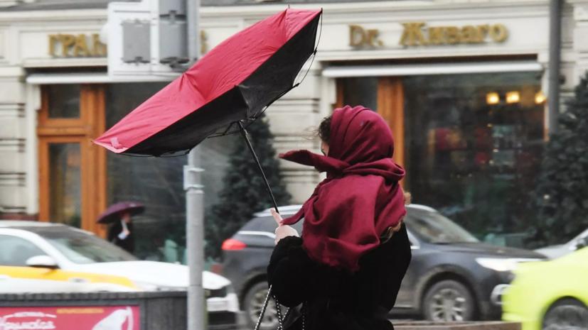 МЧС предупредило о сильном ветре в Москве