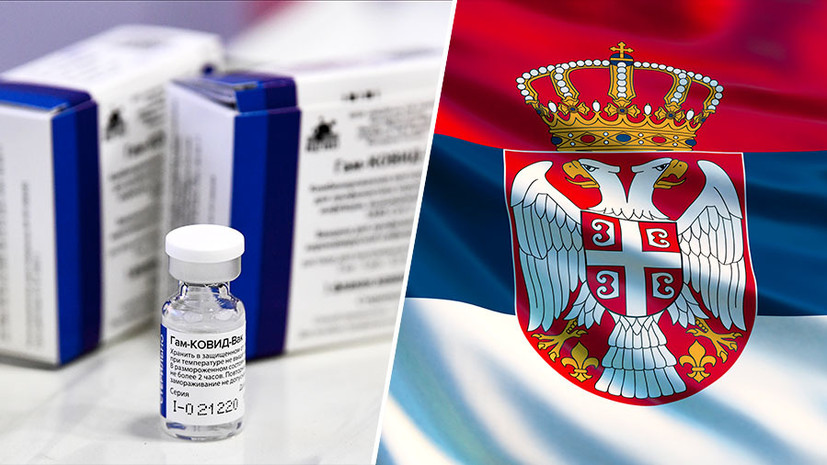 «Большой спрос на «Спутник V»: глава Минздрава Сербии об успехах иммунизации и производстве в стране российской вакцины