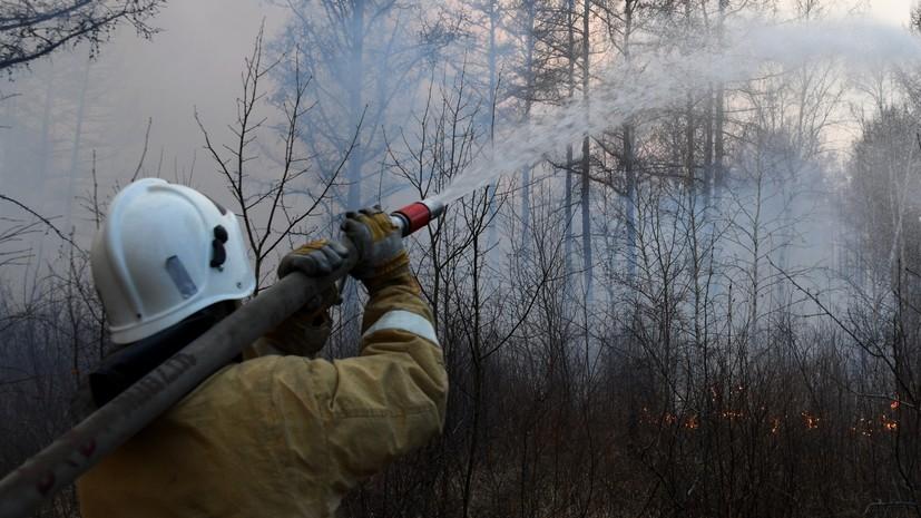 В России за сутки потушили 132 лесных пожара