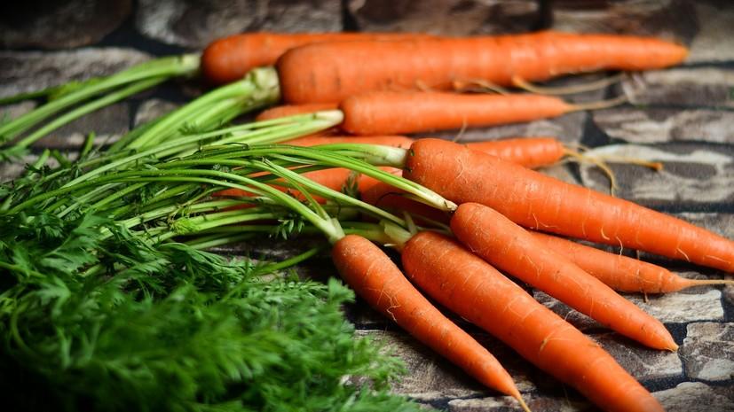 Врач рассказал, может ли употребление черники и моркови улучшить зрение