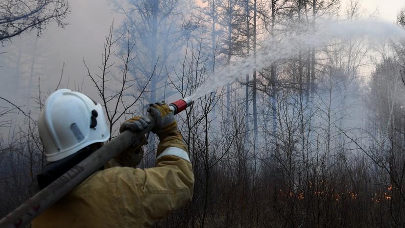 В России за сутки потушили 120 лесных пожаров