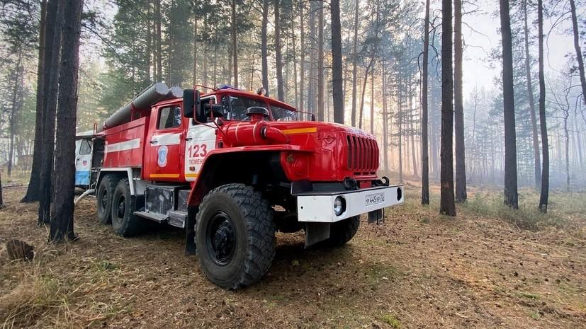 В России за сутки потушили 124 лесных пожара