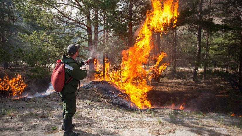 В Тюменской области ликвидировали крупный лесной пожар