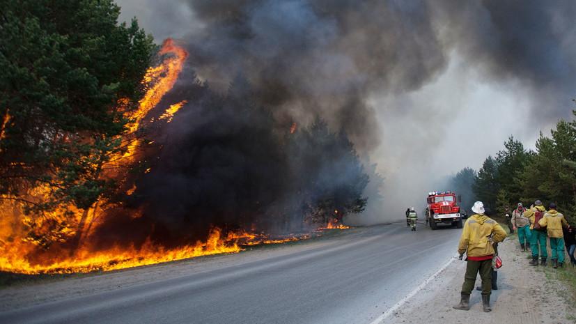 В Тюменской области организовали горячие линии в связи с эвакуацией граждан из зон лесных пожаров