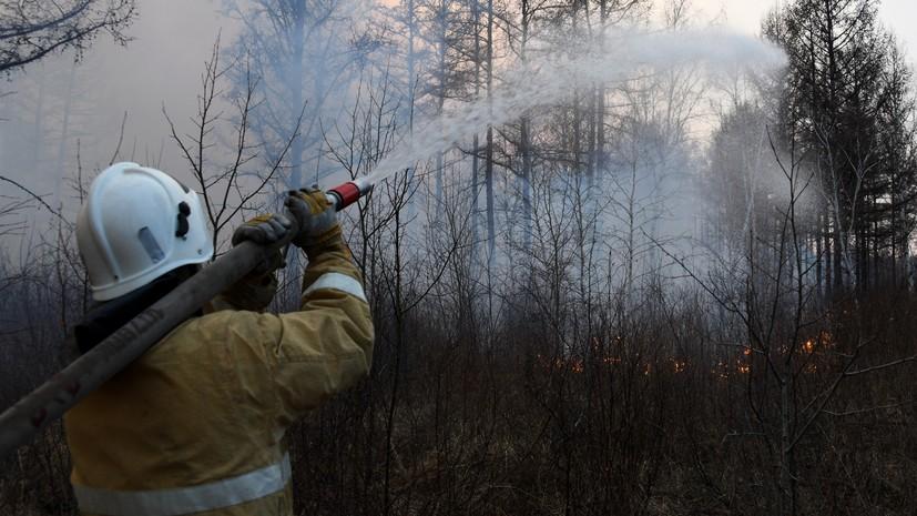 В России за сутки потушили 138 лесных пожаров