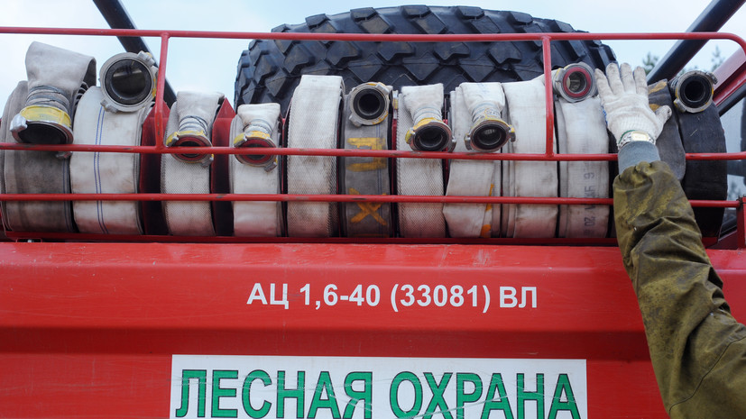 В России за сутки потушили 104 лесных пожара