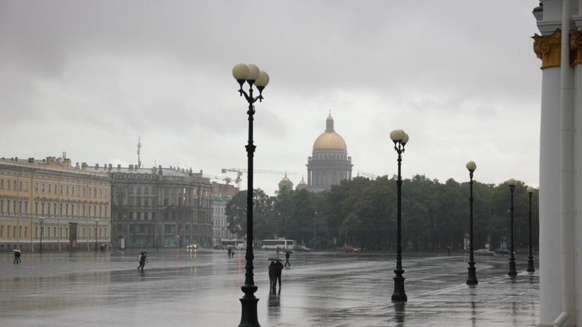 В Петербурге ураган повалил более 350 деревьев