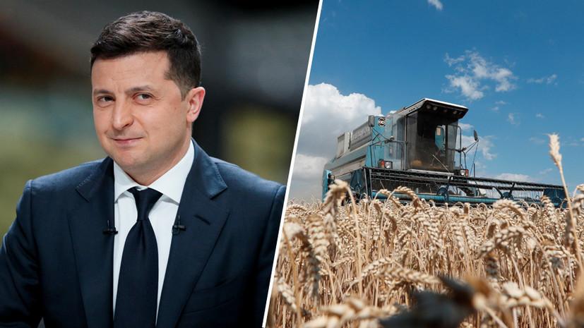 «Распродать до последней сотки»: как продвигается земельная реформа на Украине