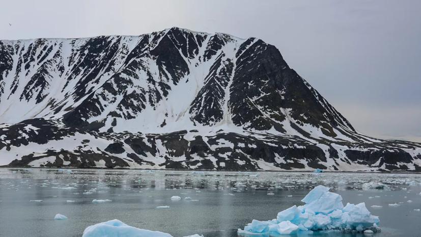 Международный арктический саммит пройдёт 26—28 мая в Москве и Петербурге