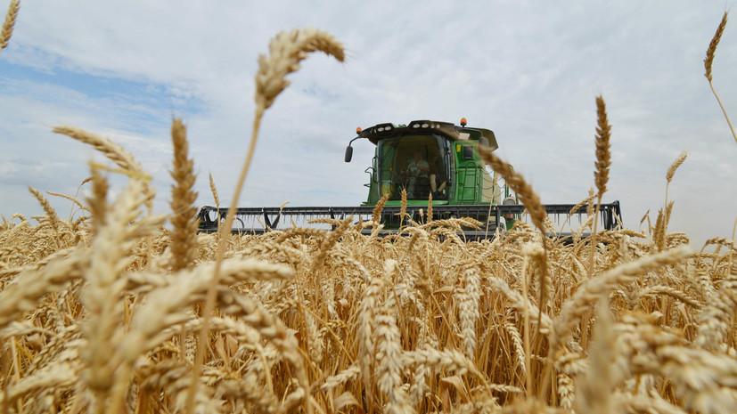 В Минсельхозе назвали размер пошлины на экспорт пшеницы