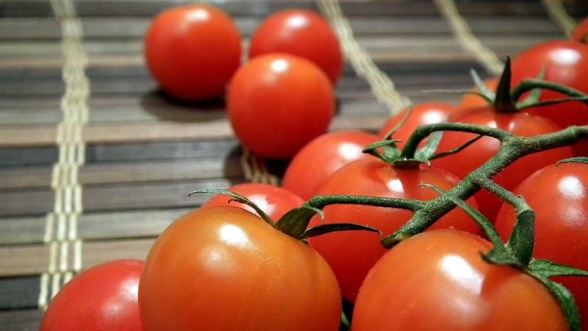 Минсельхоз России увеличил квоту ввоза томатов из Турции