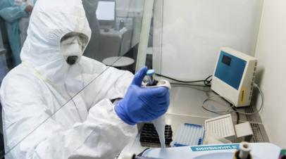 В России за сутки провели 236 тысяч тестов на коронавирус
