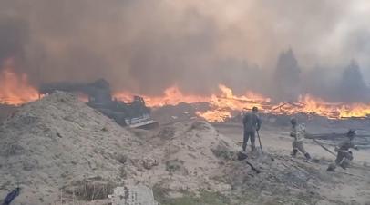 Тушение лесных пожаров в Тюменской области  видео