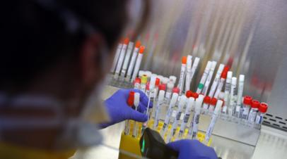 Эксперт оценил вероятность появления новых эпидемий