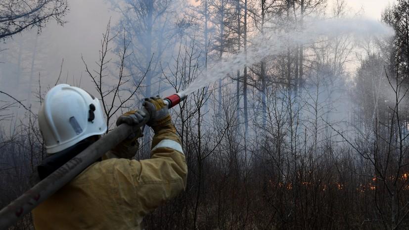 В России за сутки потушили 62 лесных пожара