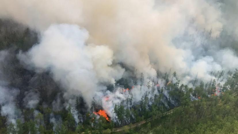 Минприроды заявило о занижении Якутией и Приангарьем данных о пожарах