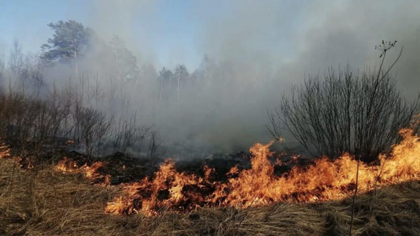 Ил-76 задействуют в тушении лесного пожара в Иркутской области