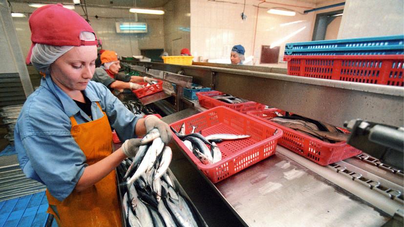 Крупный производитель рыбных консервов заявил о массовой подделке сайры