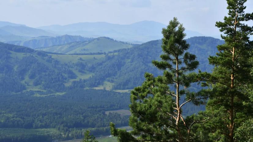 В России создадут систему онлайн-контроля экологической ситуации