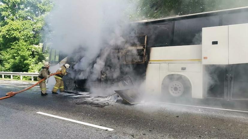 После ДТП с автобусами на Кубани госпитализированы два человека