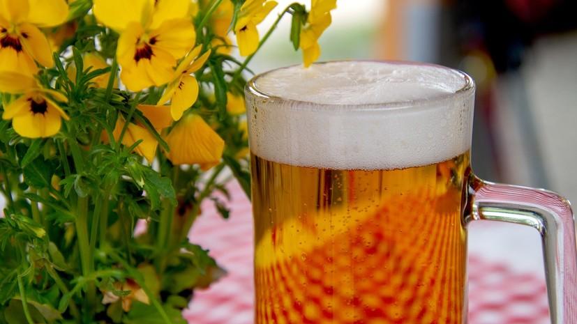 Эндокринолог рассказала о негативных последствиях употребления пива в жару