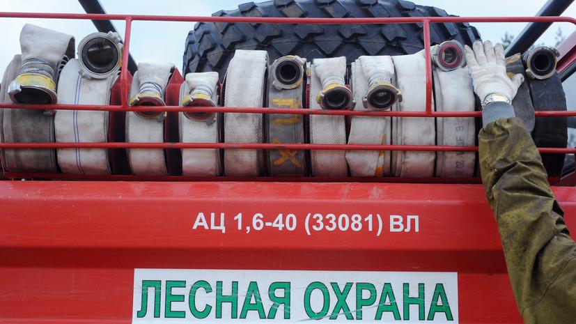 В России за сутки потушили 90 лесных пожаров