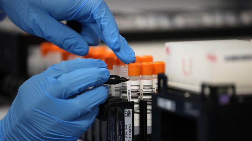 В Узбекистане за сутки выявили 487 случаев коронавируса