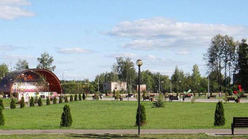 В Подмосковье рассказали о ходе благоустройства парка «Дулёвский»