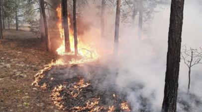 В Якутии тушат лесные пожары на площади более 360 га