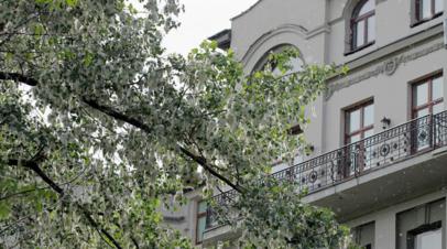 Власти Челябинска прокомментировали ситуацию с возгораниями тополиного пуха