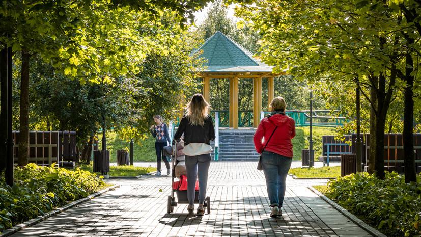 В России начинается приём заявлений на пособия беременным и родителям-одиночкам
