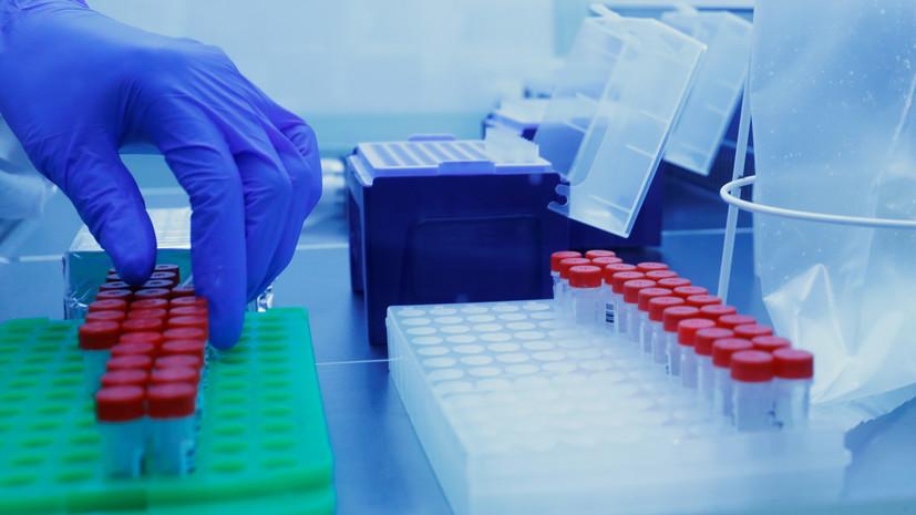 На Сахалине назвали сроки приобретения коллективного иммунитета к COVID-19