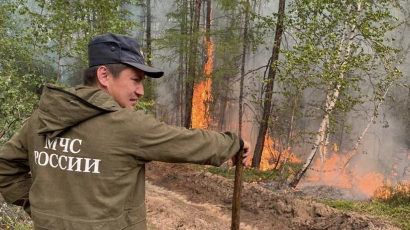 В России за сутки ликвидировали 97 лесных пожаров
