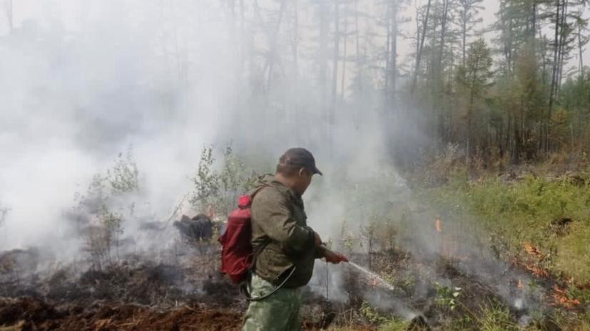 В России за сутки ликвидировали 121 лесной пожар