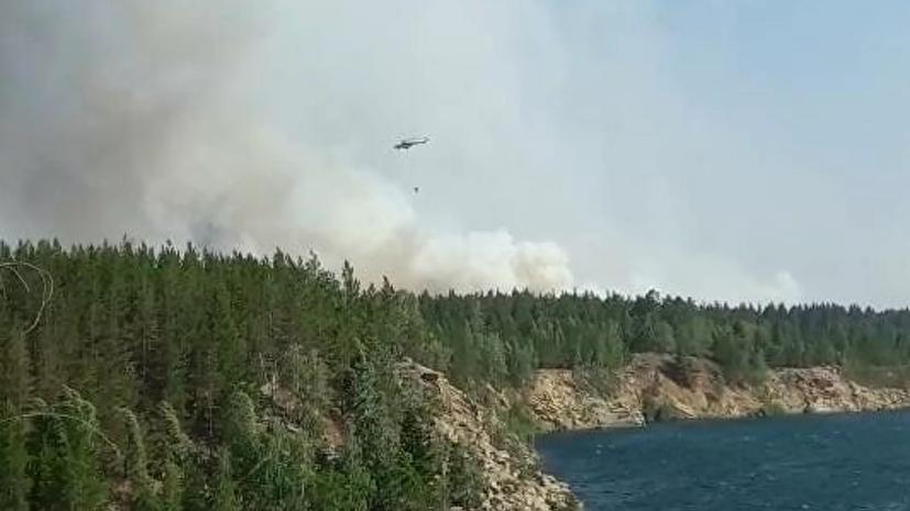 Более 1800 домов удалось спасти от лесных пожаров в Челябинской области