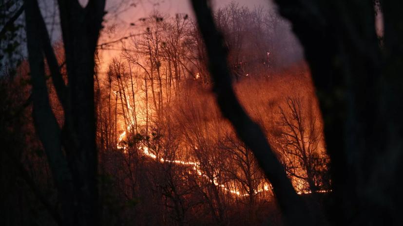 Режим ЧС ввели в одном районе Чукотки из-за природных пожаров