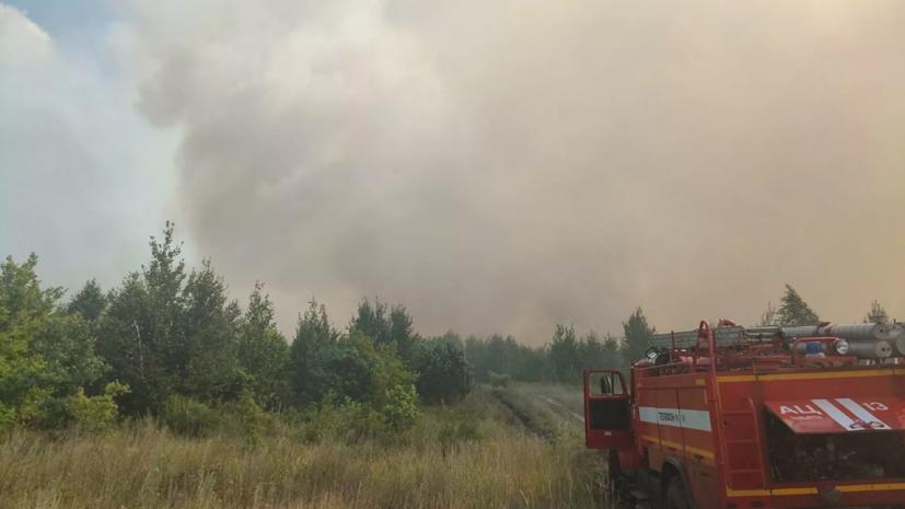 В Тольятти рассказали о ситуации с лесными пожарами