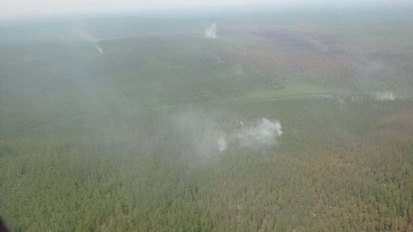 В России за сутки ликвидировали 105 лесных пожаров
