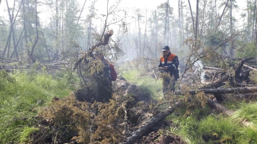 В России за сутки ликвидировали 115 лесных пожаров