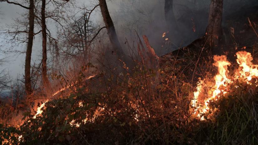 В МЧС заявили о недопущении перехода огня на населённые пункты в Якутии