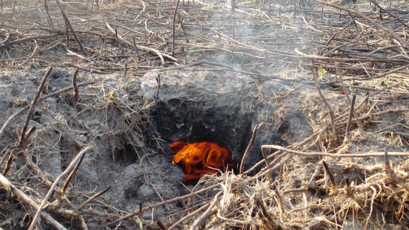 В Пермском крае для тушения крупного лесного пожара используют беспилотники