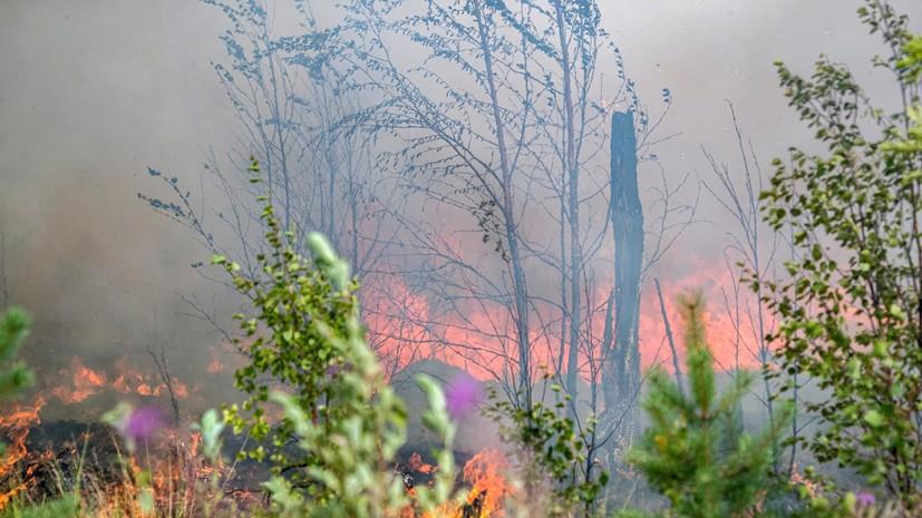 В одном из районов Приангарья ввели режим ЧС из-за лесных пожаров