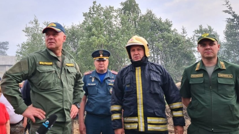 Глава МЧС и глава Карелии облетели территории, пострадавшие от лесных пожаров.