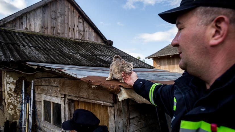 В Румынии в результате наводнения погибли два человека