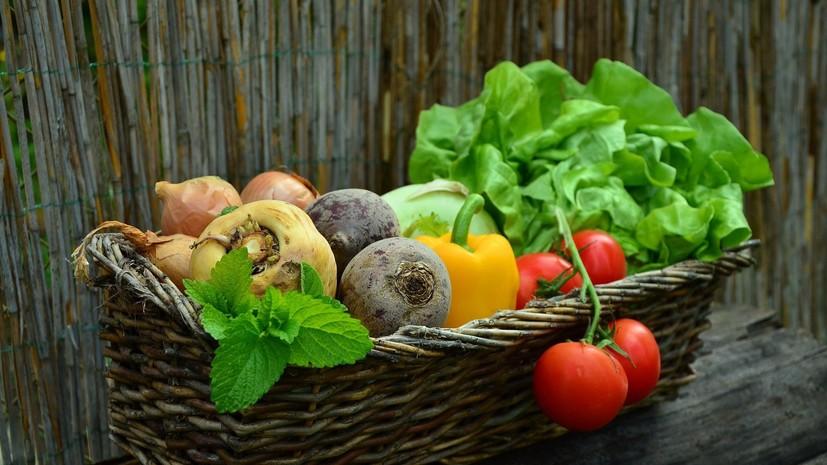 Власти России прогнозируют улучшение ситуации с ценами на овощи к сентябрю