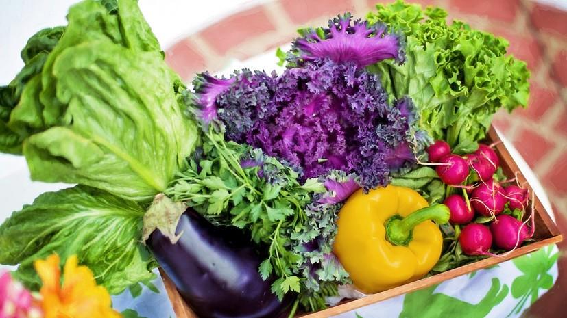 Эксперт рассказал о причинах подорожания овощей в России
